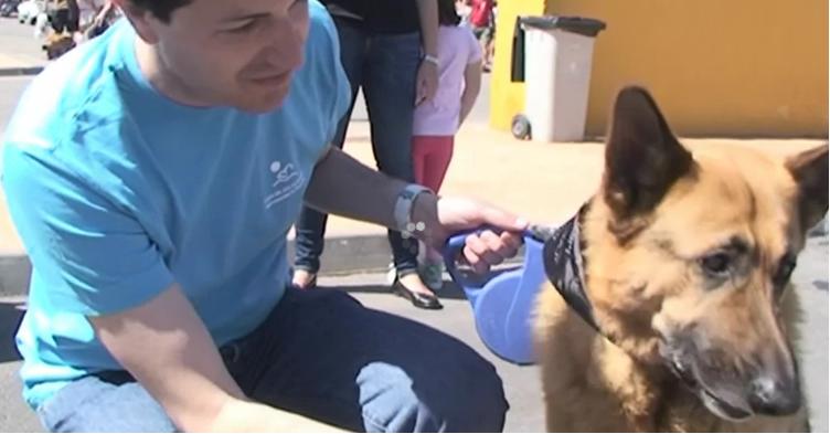 Con perro guía de la ONCE